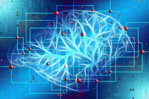 graphic of brain arteries