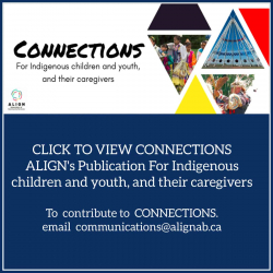 Poster for CONNECTION with indigenous logo